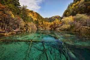 Bus Group Jiuzhaigou & Huanglong 4 days tour
