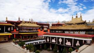 Private one day Lhasa tour